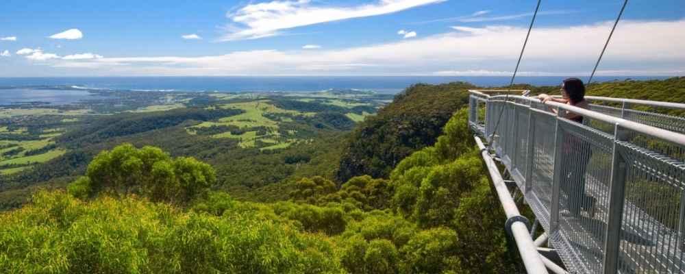 Illawarra Flytree Walk